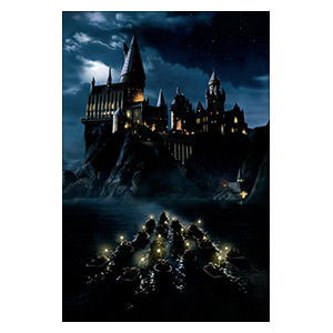 Harry Potter. Размер: 40 х 60 см